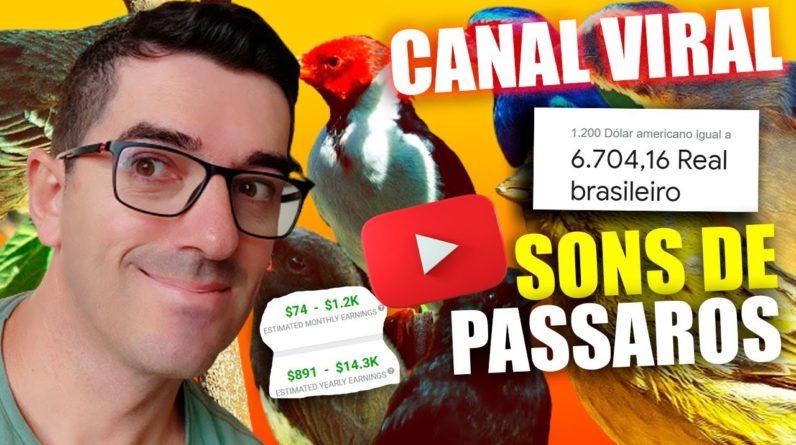 Como Criar um canal de Cantos de Passaros no Youtube para Monetizar