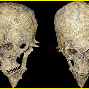 Eles descobriram um esqueleto estranho e assustador no Peru!