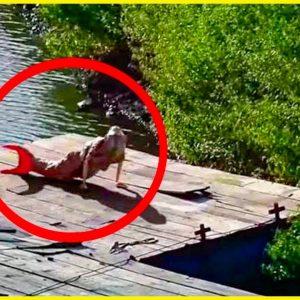 Esta é a sereia da Amazônia que aterrorizou o mundo!