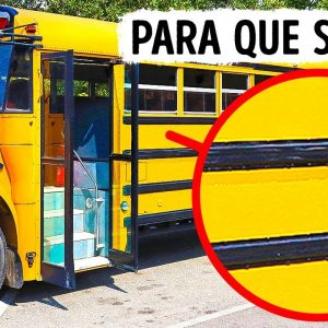Para Que Servem Aquelas Faixas Pretas dos Ônibus Escolares dos EUA?