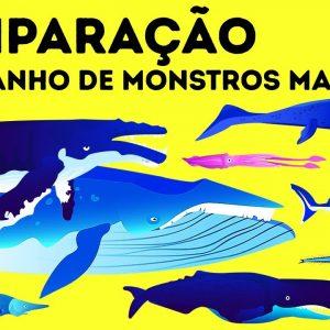 Megalodonte vs. Baleia Azul: Quem é o Gigante Marinho #1