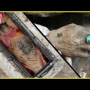Uma múmia ESTRANHA foi descoberta na China!