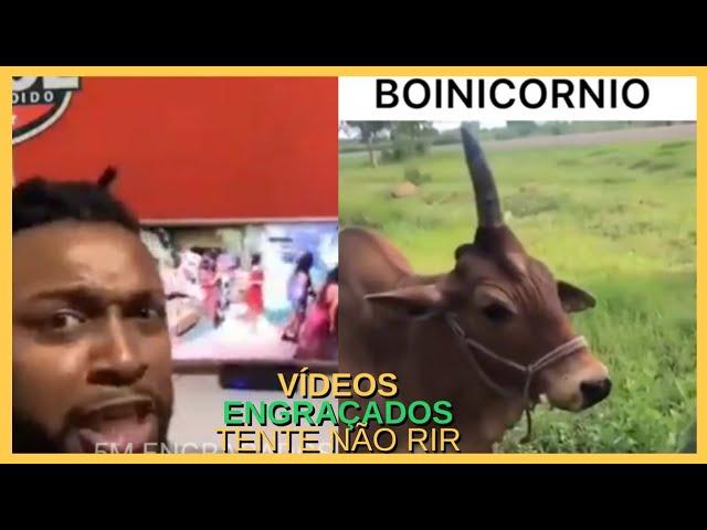 OS MELHORES MEMES E VIDEOS ENGRAÇADOS DA INTERNET #14 – TENTE NÃO RIR